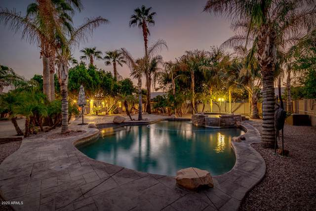 5354 S Adobe Court, Chandler, AZ 85249 (MLS #6135586) :: Budwig Team | Realty ONE Group