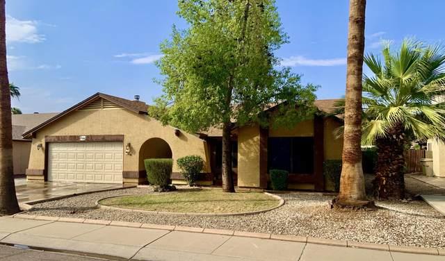 8146 W Mclellan Road, Glendale, AZ 85303 (MLS #6135605) :: Scott Gaertner Group