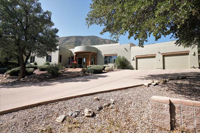 10356 S Thicket Place, Hereford, AZ 85615 (MLS #6135609) :: Service First Realty