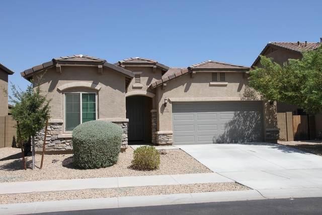 17528 W Lilac Street, Goodyear, AZ 85338 (MLS #6135681) :: Arizona Home Group