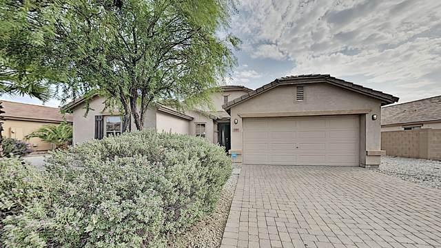 25611 W Ripple Road, Buckeye, AZ 85326 (MLS #6135692) :: Dave Fernandez Team | HomeSmart