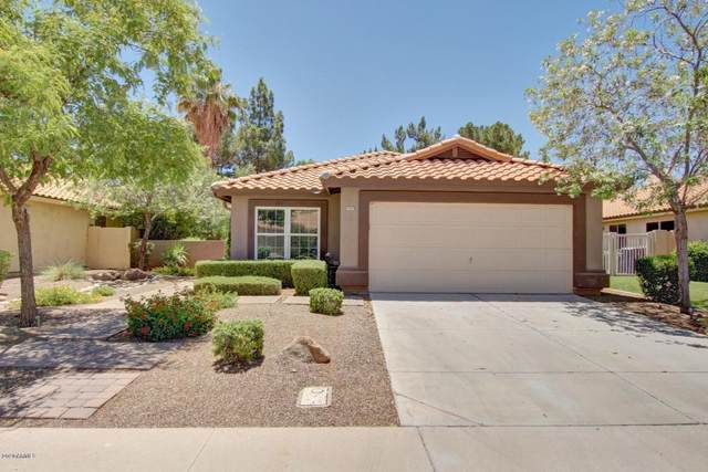 1669 S Ash Drive, Chandler, AZ 85286 (MLS #6135722) :: Riddle Realty Group - Keller Williams Arizona Realty