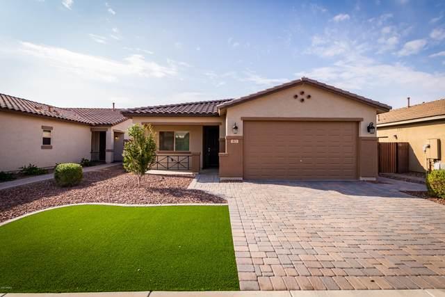 903 W Sisso Tree Avenue, San Tan Valley, AZ 85140 (MLS #6135739) :: Riddle Realty Group - Keller Williams Arizona Realty