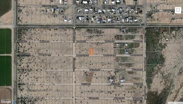 26xx2 W Plum Tree Drive, Casa Grande, AZ 85193 (MLS #6135752) :: Arizona Home Group