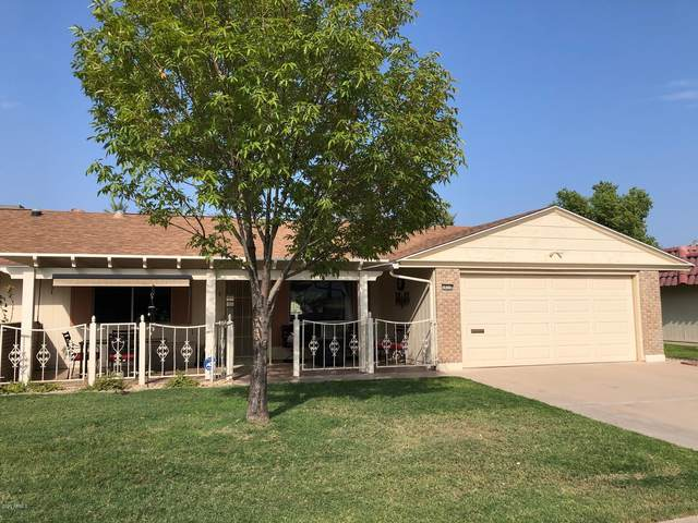 10310 W Kingswood Circle, Sun City, AZ 85351 (MLS #6135755) :: Midland Real Estate Alliance