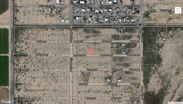 26XX1 W Plum Tree Drive, Casa Grande, AZ 85193 (MLS #6135756) :: Arizona Home Group