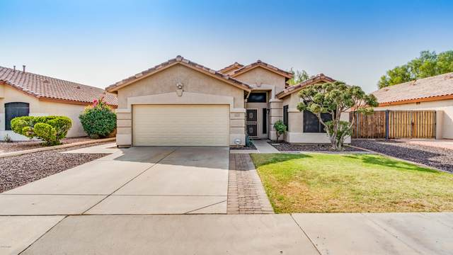 18232 N 54TH Lane, Glendale, AZ 85308 (MLS #6135772) :: The Laughton Team