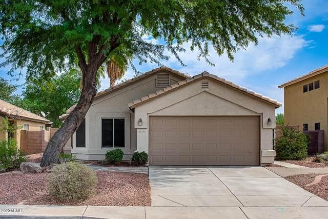 2443 N 114TH Lane, Avondale, AZ 85392 (MLS #6135836) :: Devor Real Estate Associates