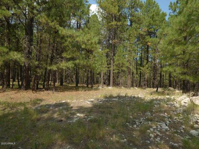 3A & B Forest Service Road 137A, Happy Jack, AZ 86024 (MLS #6135882) :: CANAM Realty Group