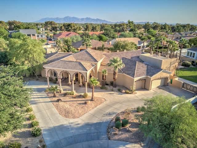 14209 W Valley View Drive, Litchfield Park, AZ 85340 (MLS #6135922) :: The Garcia Group