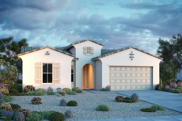 3215 N 198th Court, Buckeye, AZ 85396 (MLS #6135923) :: Lucido Agency