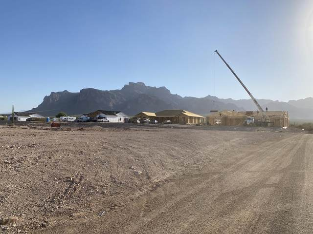 547 S Moon Road, Apache Junction, AZ 85119 (MLS #6135949) :: The Laughton Team