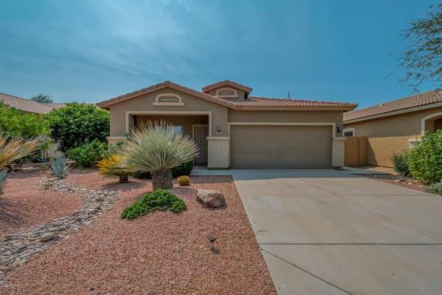 21387 E Via Del Palo, Queen Creek, AZ 85142 (MLS #6135979) :: Lucido Agency
