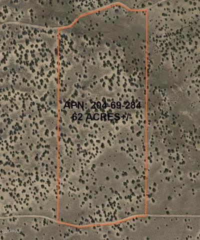 200 Country Rd N 7104, St Johns, AZ 85936 (MLS #6135999) :: Devor Real Estate Associates