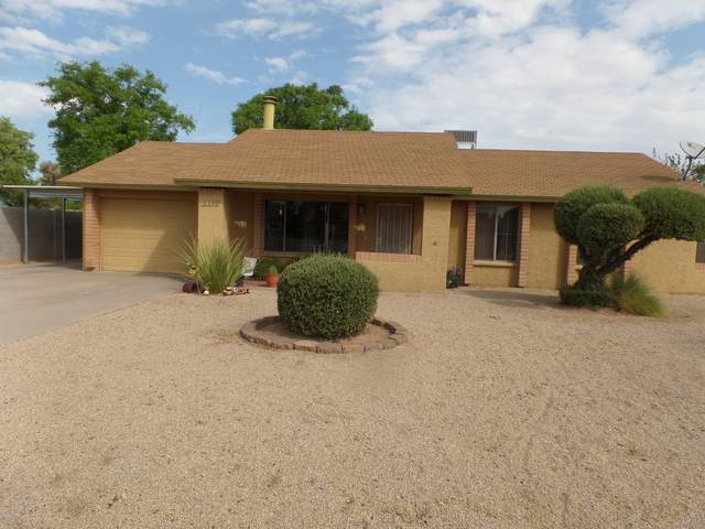 6308 W Cholla Street, Glendale, AZ 85304 (MLS #6136029) :: The Laughton Team