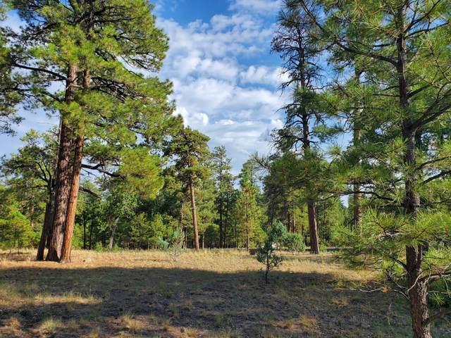 4151 Sky Mountain Drive, Happy Jack, AZ 86024 (MLS #6136040) :: Balboa Realty