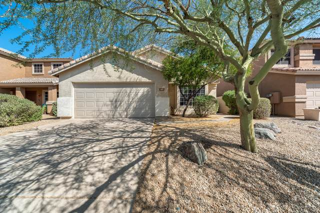 31211 N 43RD Street, Cave Creek, AZ 85331 (MLS #6136071) :: Keller Williams Realty Phoenix