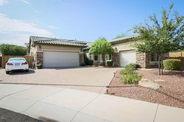 10247 W Patrick Lane, Peoria, AZ 85383 (MLS #6136111) :: TIBBS Realty