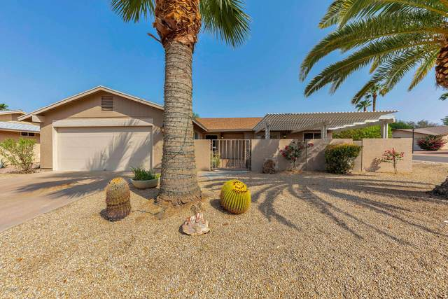 954 Leisure World, Mesa, AZ 85206 (MLS #6136119) :: My Home Group