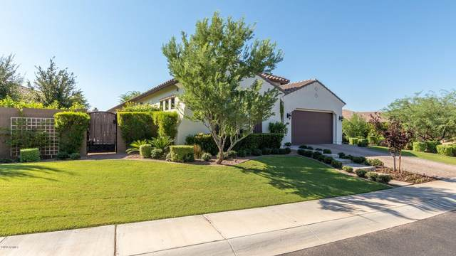 5311 E Palo Brea Lane, Cave Creek, AZ 85331 (MLS #6136120) :: Keller Williams Realty Phoenix