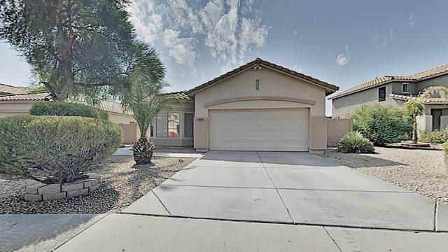 13377 W Evans Drive, Surprise, AZ 85379 (MLS #6136187) :: TIBBS Realty