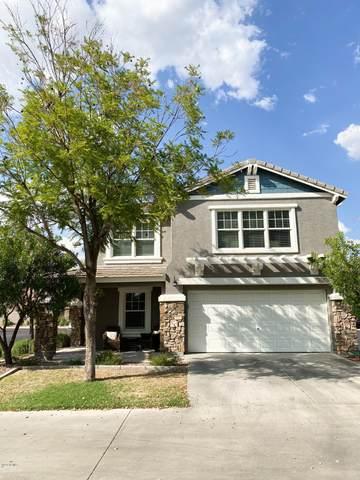 16161 N 171ST Drive, Surprise, AZ 85388 (MLS #6136195) :: TIBBS Realty