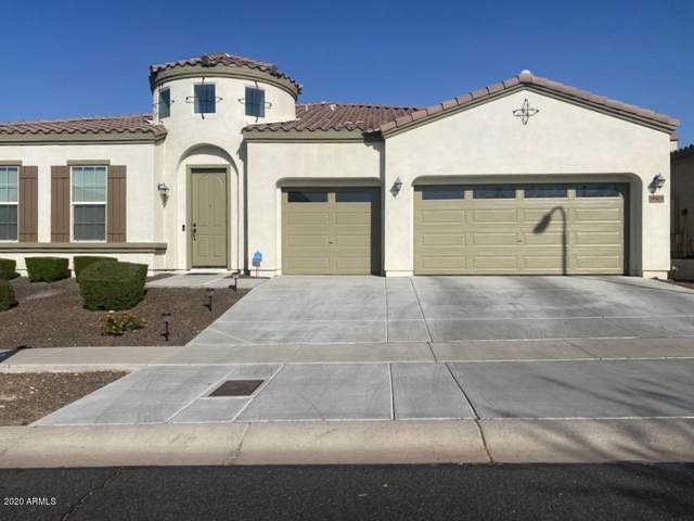 9905 S 6TH Place, Phoenix, AZ 85042 (MLS #6136278) :: TIBBS Realty