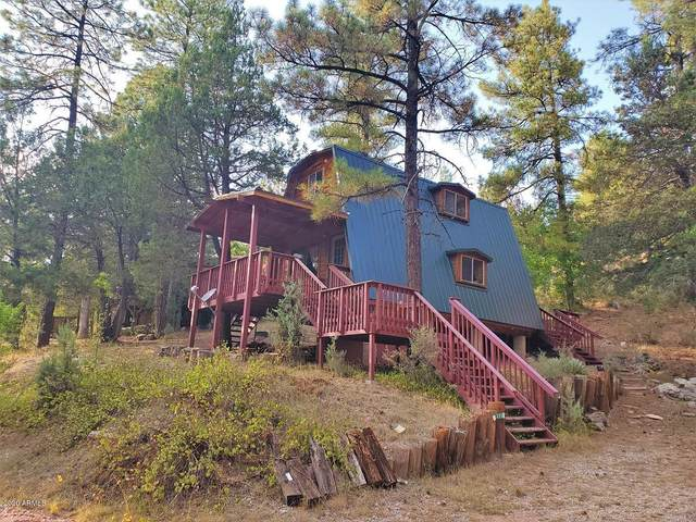 588 E Friendly Elk Drive, Payson, AZ 85541 (MLS #6136282) :: The Bill and Cindy Flowers Team