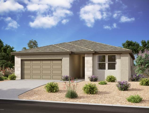 28719 N 131ST Lane, Peoria, AZ 85383 (MLS #6136305) :: Howe Realty
