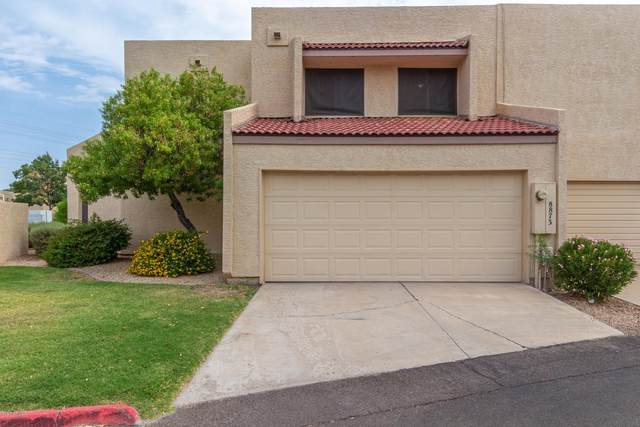 8873 N 47TH Lane, Glendale, AZ 85302 (MLS #6136311) :: TIBBS Realty
