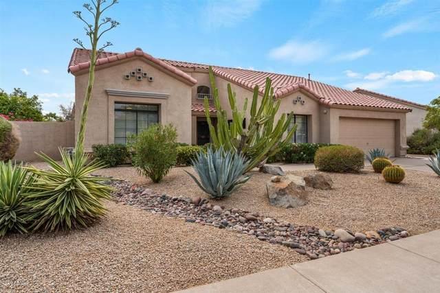 9115 E Caribbean Lane, Scottsdale, AZ 85260 (MLS #6136371) :: TIBBS Realty