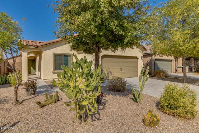 42568 W Lucera Court, Maricopa, AZ 85138 (MLS #6136441) :: Klaus Team Real Estate Solutions