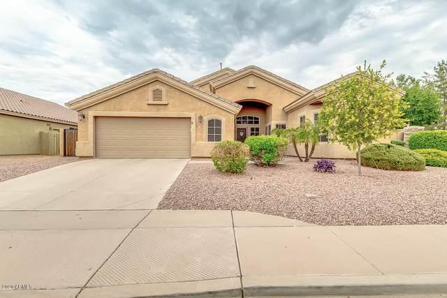 9812 E Monterey Avenue, Mesa, AZ 85209 (MLS #6136446) :: TIBBS Realty