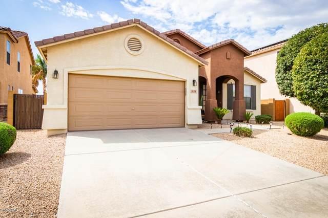 30590 N Rebecca Lane, San Tan Valley, AZ 85143 (MLS #6136469) :: Klaus Team Real Estate Solutions