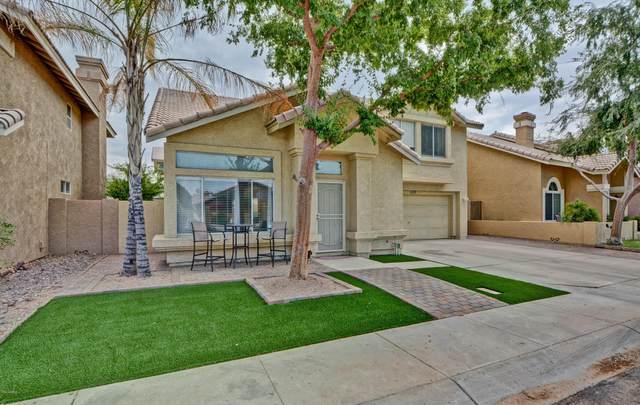 1171 N Newport Street, Chandler, AZ 85225 (MLS #6136481) :: Homehelper Consultants