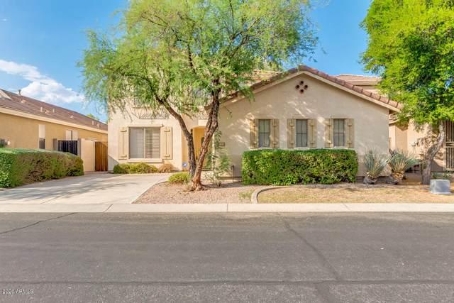 1830 W Orchid Lane, Chandler, AZ 85224 (MLS #6136510) :: Homehelper Consultants
