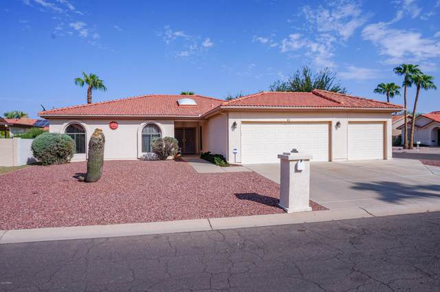 26629 S Sageberry Drive, Sun Lakes, AZ 85248 (MLS #6136583) :: The J Group Real Estate | eXp Realty