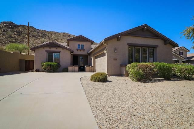 31858 N Larkspur Drive, San Tan Valley, AZ 85143 (MLS #6136606) :: Arizona 1 Real Estate Team