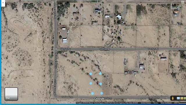 XX W Concordia Drive, Eloy, AZ 85131 (MLS #6136631) :: Yost Realty Group at RE/MAX Casa Grande