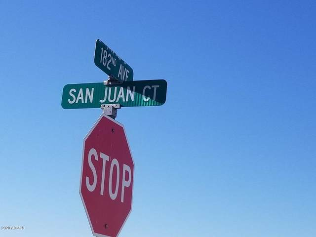 18209 W San Juan Court, Litchfield Park, AZ 85340 (MLS #6136709) :: Arizona 1 Real Estate Team