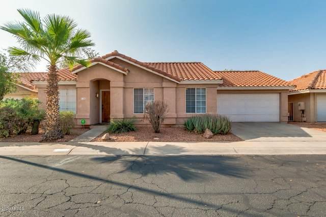 3911 W Dublin Street, Chandler, AZ 85226 (MLS #6136736) :: Brett Tanner Home Selling Team