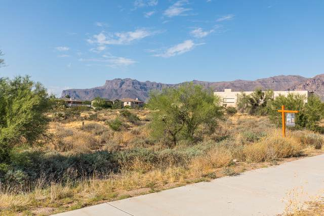 5826 S Kings Ranch Road, Gold Canyon, AZ 85118 (MLS #6136743) :: Balboa Realty