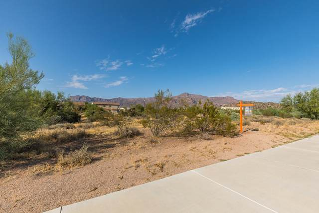 5936 S Kings Ranch Road, Gold Canyon, AZ 85118 (MLS #6136746) :: Balboa Realty