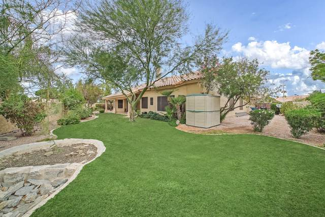 3335 S Holly Court, Chandler, AZ 85248 (MLS #6136817) :: The Property Partners at eXp Realty