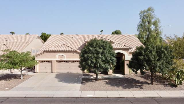 6272 W Shannon Street, Chandler, AZ 85226 (MLS #6136821) :: The Everest Team at eXp Realty