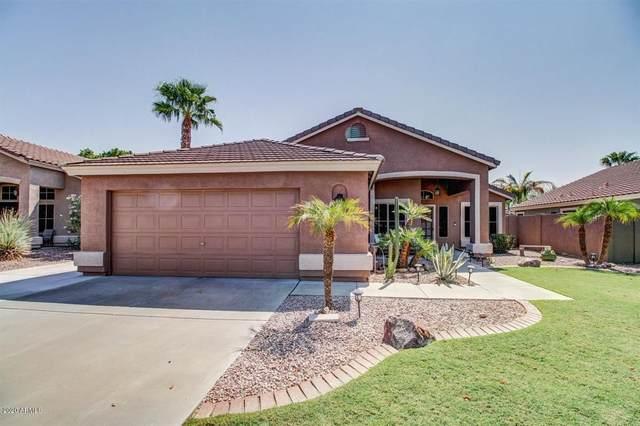 6801 W Aurora Drive, Glendale, AZ 85308 (MLS #6136847) :: Yost Realty Group at RE/MAX Casa Grande