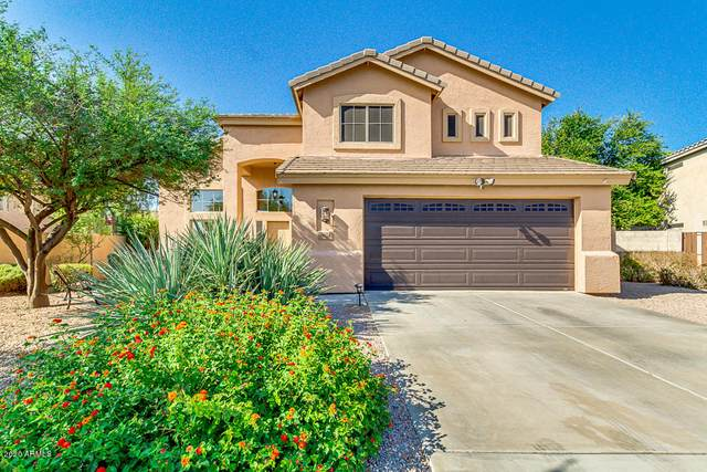 6024 S Halsted Court, Chandler, AZ 85249 (MLS #6136863) :: Scott Gaertner Group