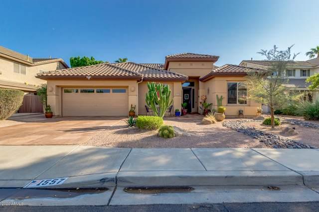 1557 E Laredo Street, Chandler, AZ 85225 (MLS #6136908) :: Keller Williams Realty Phoenix