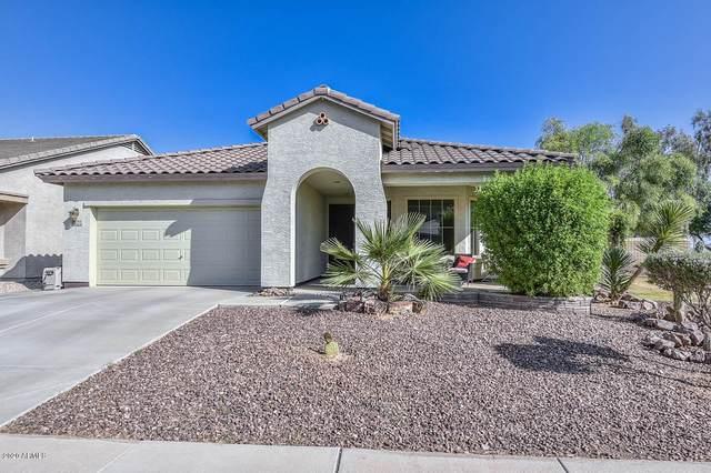 11714 W Jessie Lane, Sun City, AZ 85373 (MLS #6136922) :: Dave Fernandez Team | HomeSmart