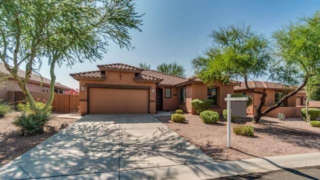 7563 E Elderberry Way, Gold Canyon, AZ 85118 (MLS #6136961) :: Balboa Realty